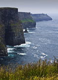 Cliffs of Moher. In Ireland Royalty Free Stock Photography