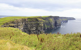Cliffs of Moher and Atlantic Ocean. Stock Photo