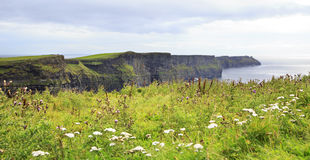 Cliffs of Moher and Atlantic Ocean. Royalty Free Stock Photography