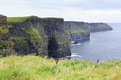 Cliffs of Moher and Atlantic Ocean. Royalty Free Stock Images
