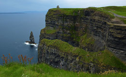 Cliffs of moher,capture,west of ireland Stock Photography
