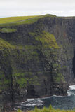 Cliffs of moher in Clare co., Ireland Royalty Free Stock Image