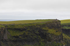 Cliffs of moher in Clare co., Ireland Royalty Free Stock Photo