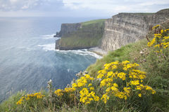 Cliffs of Moher; Clare Stock Image