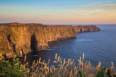 The Cliffs of Moher royalty free stock photography