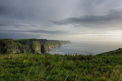 Cliffs of Moher, County Clare, Ireland, Europe royalty free stock image