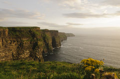 Cliffs of Moher, County Clare, Ireland, Europe. The beautiful Cliffs of Moher, County Clare, Ireland, Europe Stock Photography
