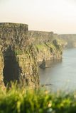 Cliffs of Moher in County Clare, Ireland Royalty Free Stock Photography