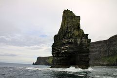 Cliffs of Moher detail Royalty Free Stock Photography