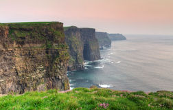 Cliffs of Moher at dusk. Irish national landmark Stock Photography