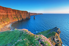 Cliffs of Moher in Ireland Royalty Free Stock Photos