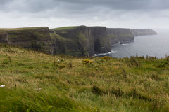 The cliffs of Moher. Cliffs of Moher in Ireland in a cloudy day Stock Photo