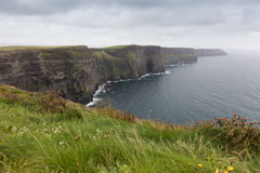 The cliffs of Moher. Cliffs of Moher in Ireland in a cloudy day Royalty Free Stock Image