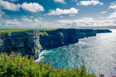 Cliffs Of Moher In Ireland Royalty Free Stock Image