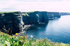 The Cliffs of Moher Royalty Free Stock Photos