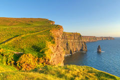Cliffs of Moher at sunset Royalty Free Stock Photo