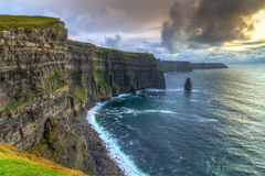 Cliffs of Moher at sunset Stock Images