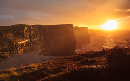 Cliffs of Moher at sunset in Co. Clare Ireland Europe. Famous cliffs of Moher at sunset in Co. Clare Ireland Europe. Beautiful landscape natural attraction Royalty Free Stock Images