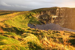 Cliffs of Moher at sunset in Co. Clare, Ireland. Famous cliffs of Moher at sunset in Co. Clare Ireland natural attraction Stock Photography