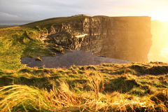 Cliffs of Moher at sunset in Co. Clare, Ireland. Famous cliffs of Moher at sunset in Co. Clare Ireland natural attraction Stock Photos
