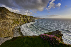Cliffs of Moher at sunset, Co. Clare, Ireland Stock Image