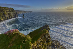 Cliffs of Moher at sunset, Co. Clare, Ireland Royalty Free Stock Photo