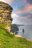 Cliffs of Moher verical. Cliffs of Moher at sunset, Co. Clare, Ireland Royalty Free Stock Photo
