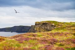 Cliffs of Moher, west coast of Ireland, County Clare on wild Atlantic ocean. Photo of a beautiful scenic sea and sky landscape. View of ocean scenery Royalty Free Stock Photography