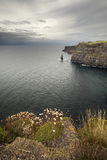 Cliffs of Mother Stock Photo