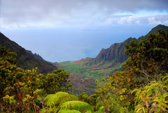 Cliffs on the Na Pali coast  Stock Images