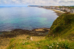 Cliffs near Etretat and Fecamp Royalty Free Stock Photography