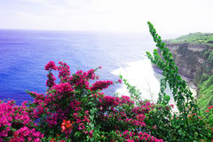 Cliffs near Uluwatu Temple on Bali, Indonesia. Beautiful blossom Uluwatu Temple on Bali, Indonesia. Stock Photo