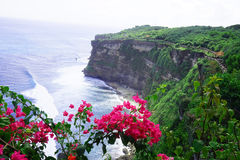 Cliffs near Uluwatu Temple on Bali, Indonesia. Beautiful blossom Uluwatu Temple on Bali, Indonesia. The cliffs and the sea near the Uluwatu Temple on Bali Stock Photography