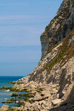 Cliffs on the North  sea Royalty Free Stock Images