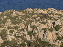 Cliffs of northern Sardinia. Beautiful coast of the island of Caprera his name and cala Coticcio Royalty Free Stock Image