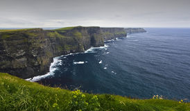 Free Cliffs Of Moher Royalty Free Stock Photos - 8378038
