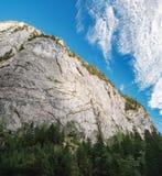 Cliffs of Bicaz Gorge in Carpathians, Romania. Cliffs and pine forest at the Bicaz Gorge in Carpathians, Romania Royalty Free Stock Photos