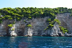 Cliffs and pine trees stock image