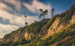 Cliffs of Point Dume. Cliffs and palm trees during sunset at Point Dume State Beach, Malibu, California Stock Photo