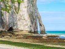 Cliffs Porte d'Aval in Etretat, France Stock Image