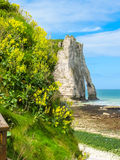 Cliffs Porte d'Aval in Etretat, France Royalty Free Stock Image