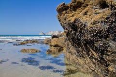 Cliffs of Presqu'ile de Crozon Stock Images