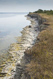 Cliffs on Saaremaa. Island, Estonia Royalty Free Stock Image