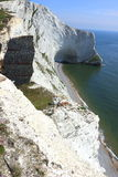 Cliffs at Scratchells Bay on the Isle of Wight Royalty Free Stock Photography