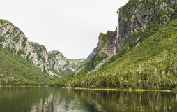 Cliffs on Western Brook Pond Stock Images