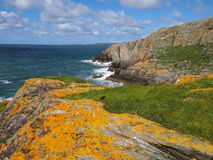 Cliffs with yellow lichen Royalty Free Stock Images