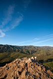Clifftop in Angeles Forest Royalty Free Stock Images