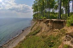 Clifftop com a floresta acima da praia Fotografia de Stock