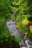 Clifton Gorge Stock Image