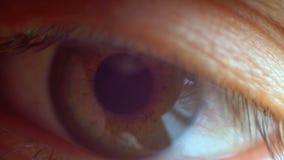 Clignotement masculin en gros plan extrême d'oeil humain banque de vidéos